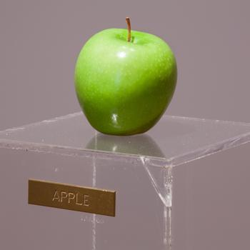 yoko_ono__apple__1966_apple__plexiglass__bronze_plaque-151856AD5D70DA3225E