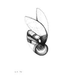 FranklinSumer-Fly