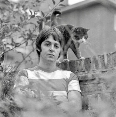 Paul&Cat